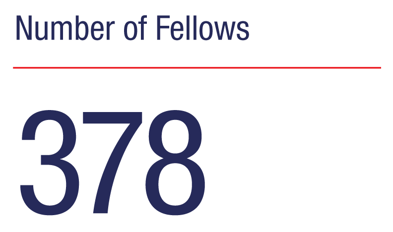 Number of Fellows: 378