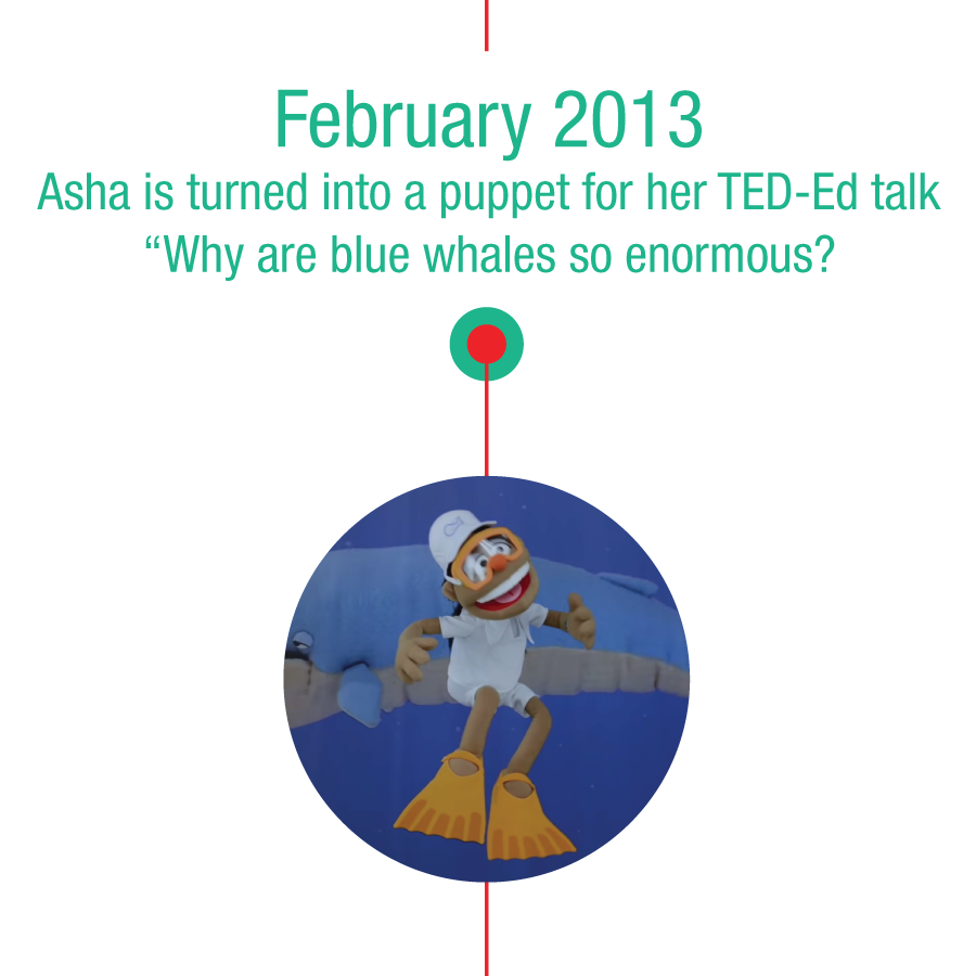 "February 2013: Asha is turned into a puppet for her TED-Ed talk ""Why are blue whales so enormous?"""
