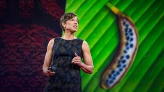 موضوع تغییر ژنتیکی غذایمان