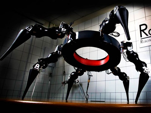 My seven species of robot — and how we created them