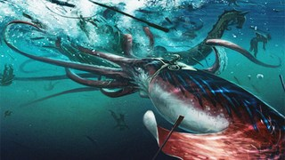 How we found the giant squid