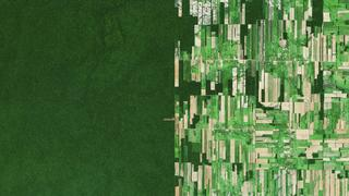ベンジャミン・グラント宇宙から地球を見るのはどんな気持ちか