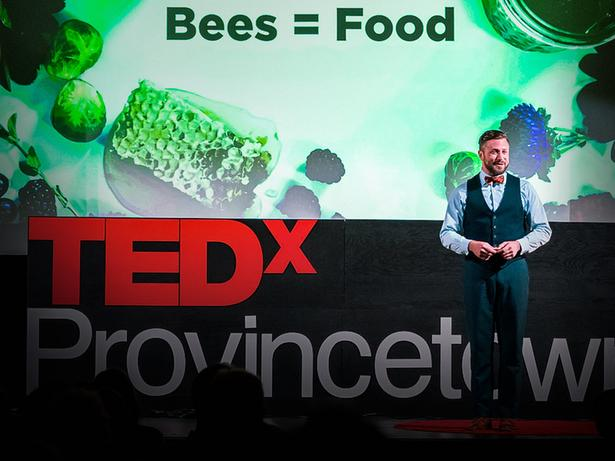 How you can help save the bees, one hive at a time | Noah Wilson-Rich