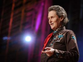 Ted Video 1351 Steve Silberman >> Temple Grandin Search Results Ted