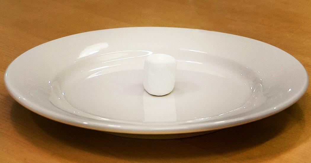 Lyric raw sugar lyrics : Joachim de Posada: Don't eat the marshmallow! | TED Talk