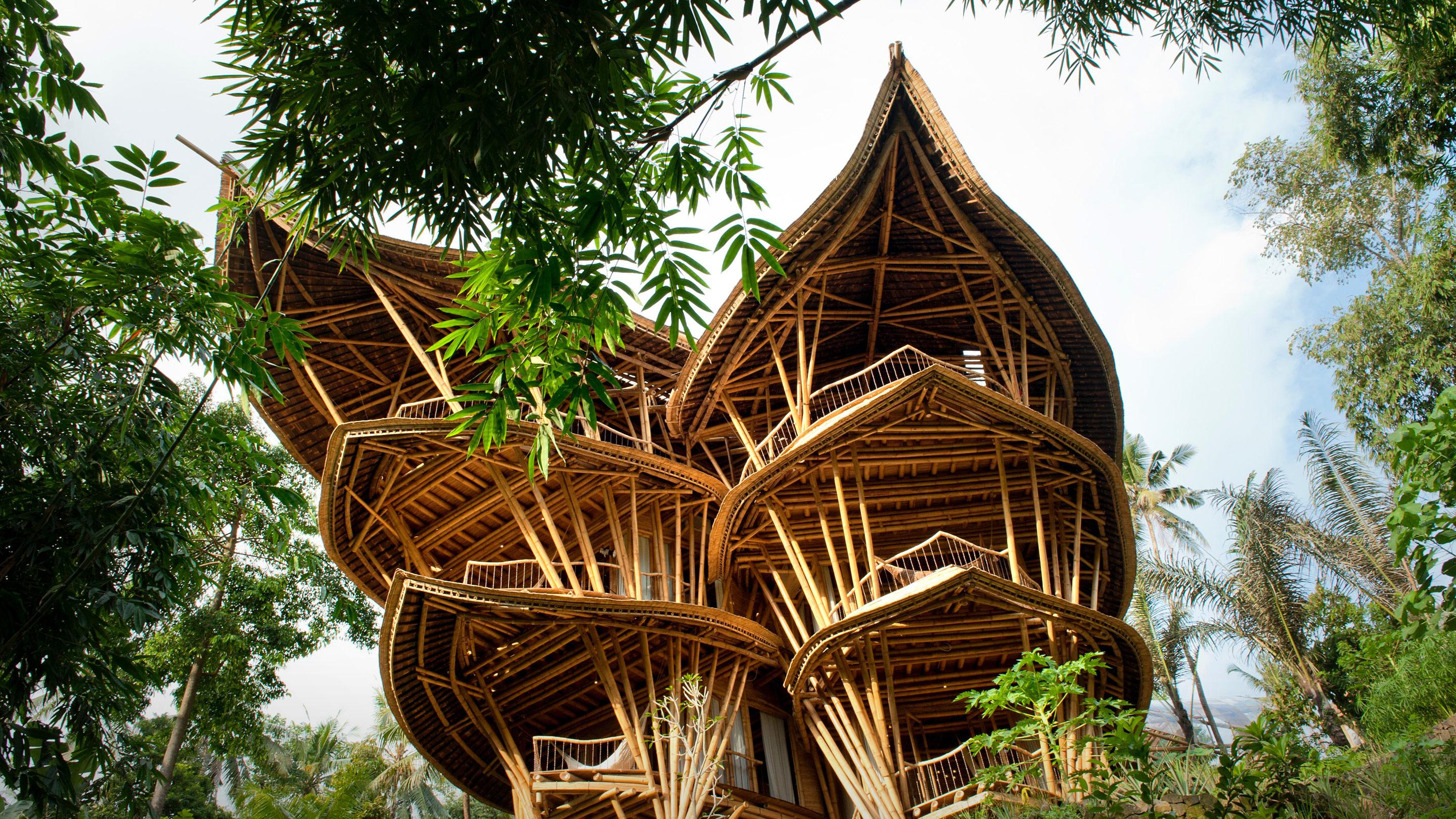 picture of bamboo house - house and home design