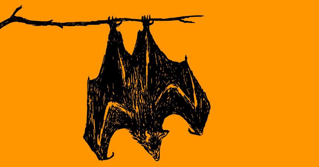 Spooky, Creepy Talks For Halloween