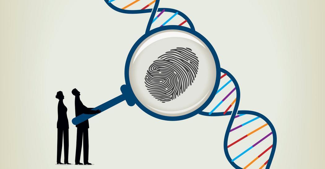 How Does DNA Work Playlist TEDcom