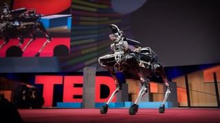 Meet Spot, the robot dog that can run, hop and open doors