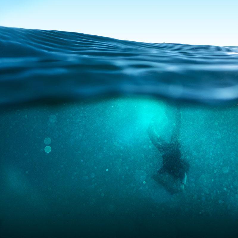 ocean wonders ted talks