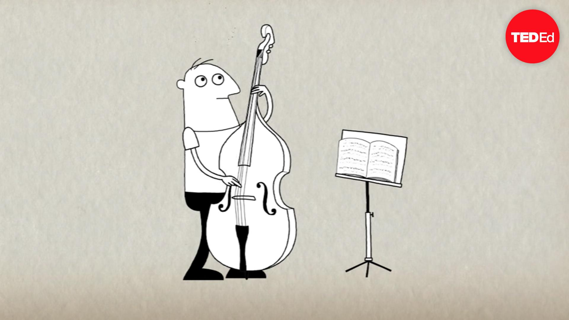 How playing an instrument benefits your brain | Anita Collins