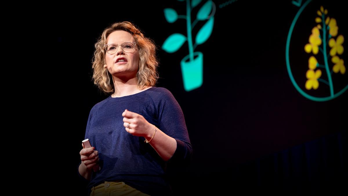 The next software revolution: programming biological cells