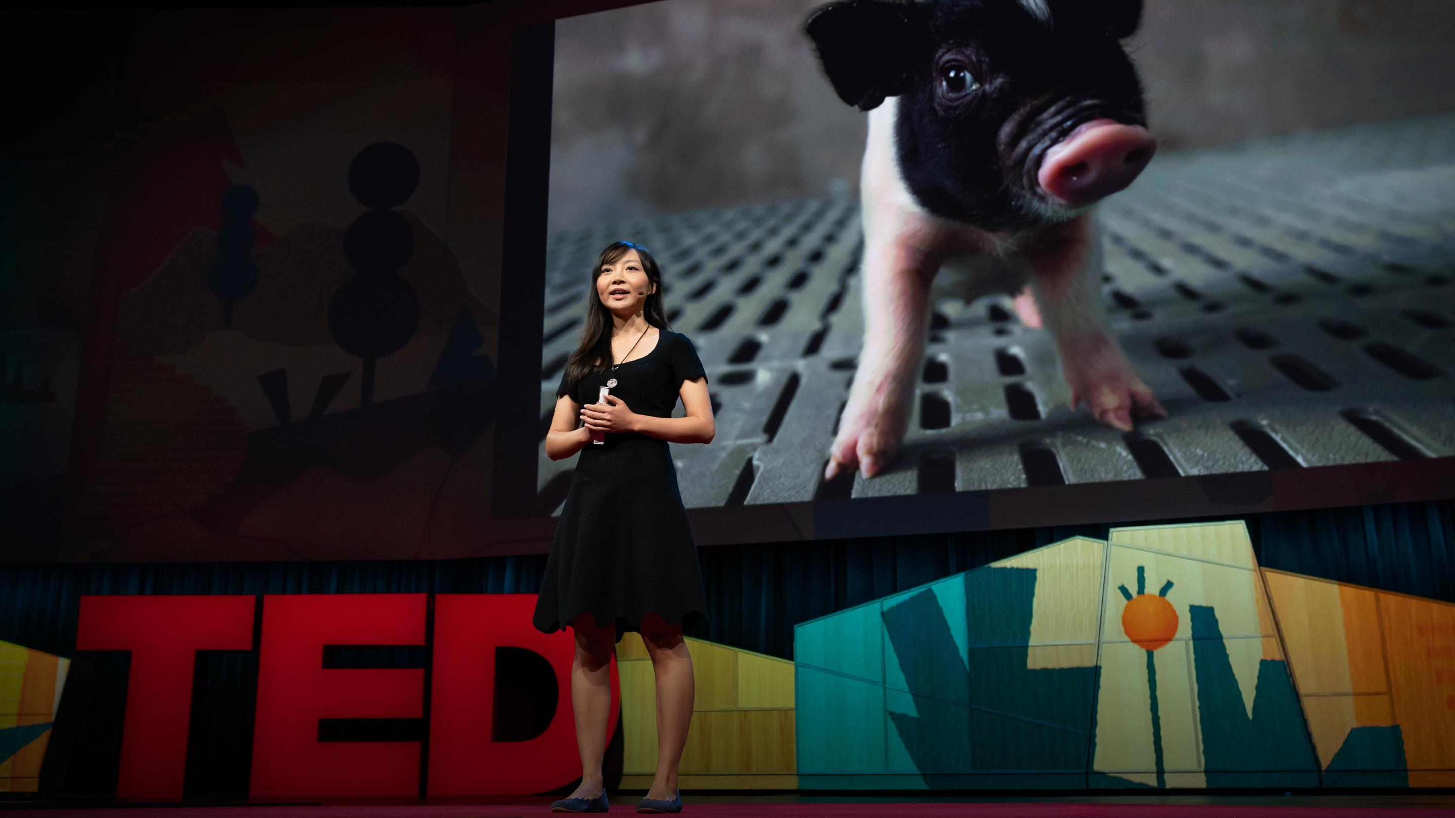 How to create a world where no one dies waiting for a transplant | Luhan Yang