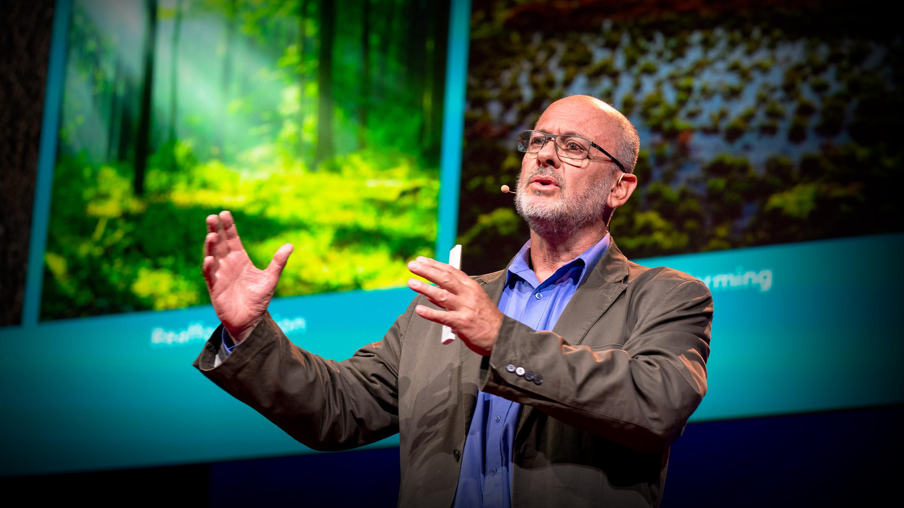 Can seaweed help curb global warming? | Tim Flannery