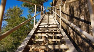 デイヴィッド・ロックウェル私たちの生活を形作る階段の隠れた役割