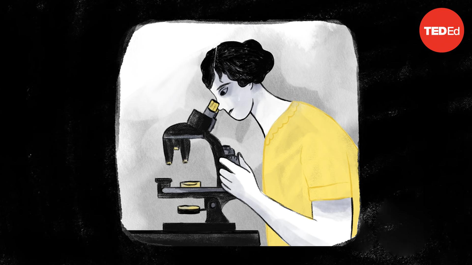 How one scientist took on the chemical industry | Mark Lytle