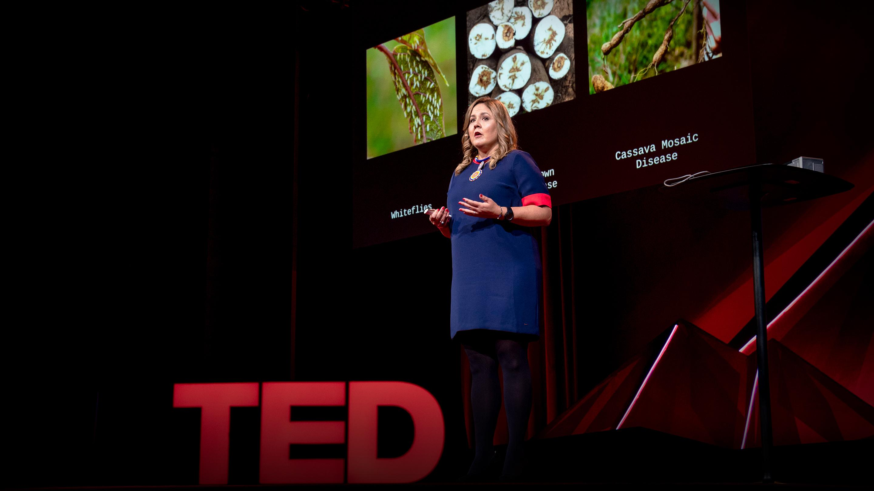 How we're using DNA tech to help farmers fight crop diseases | Laura Boykin