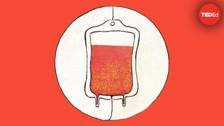 ビル・シャット輸血の歴史 ―ビル・シャット