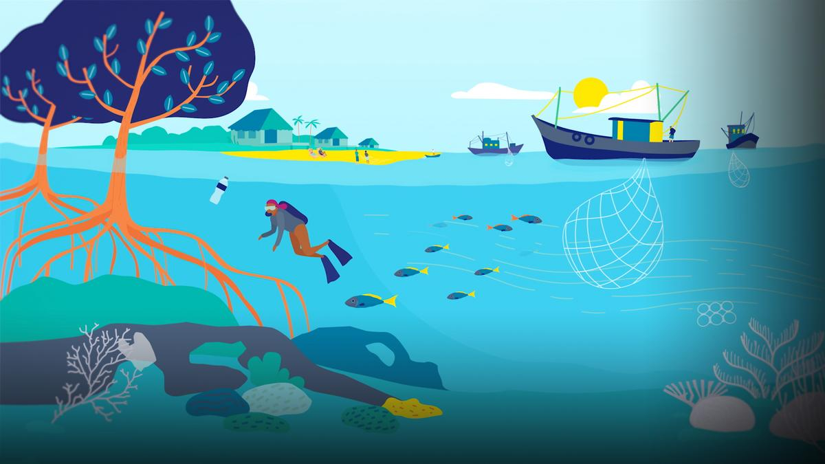 An ingenious proposal for scaling up marine protection