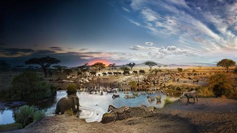 24 hours on Earth -- in one image | Stephen Wilkes