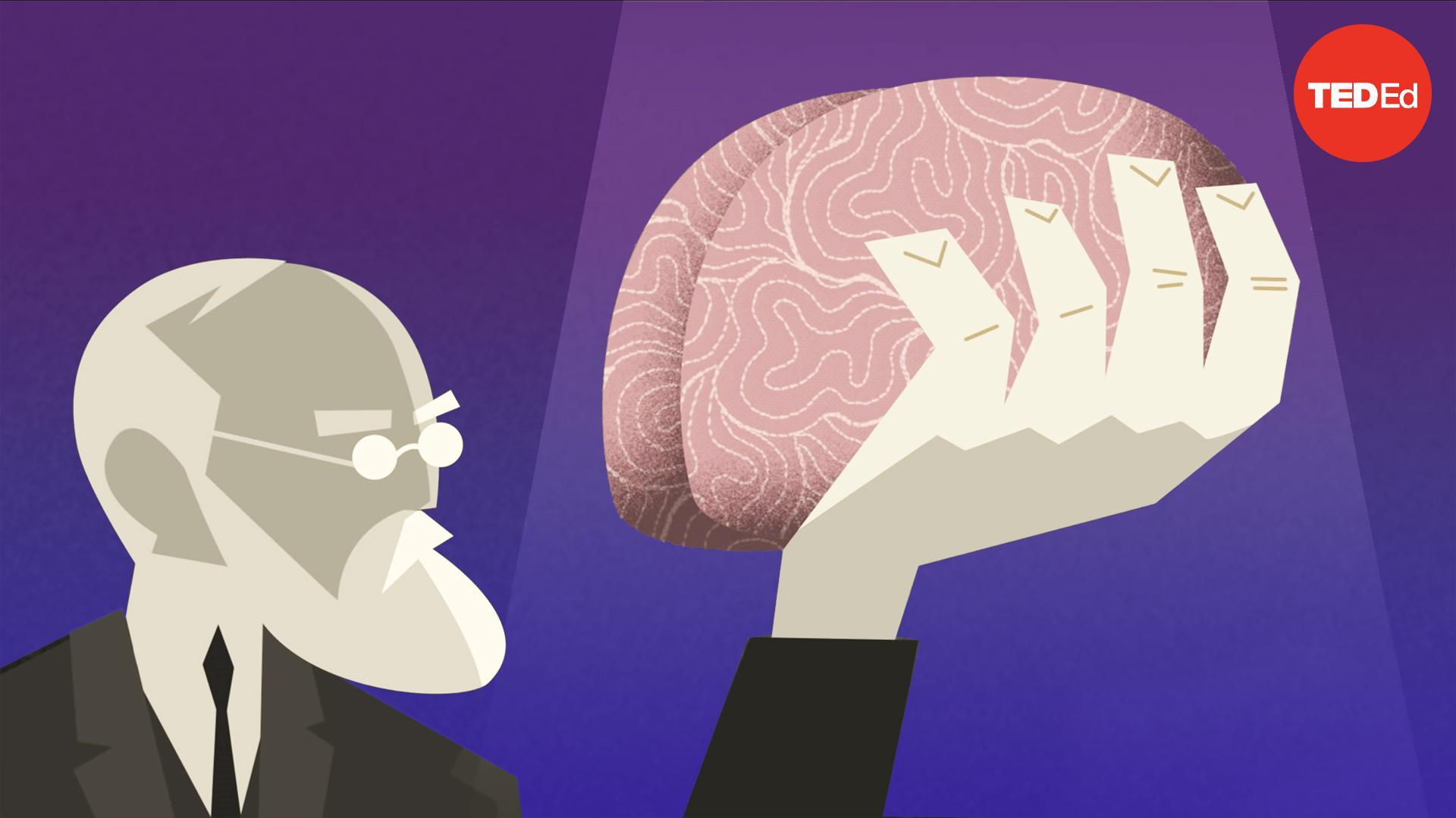 History vs. Sigmund Freud | Todd Dufresne