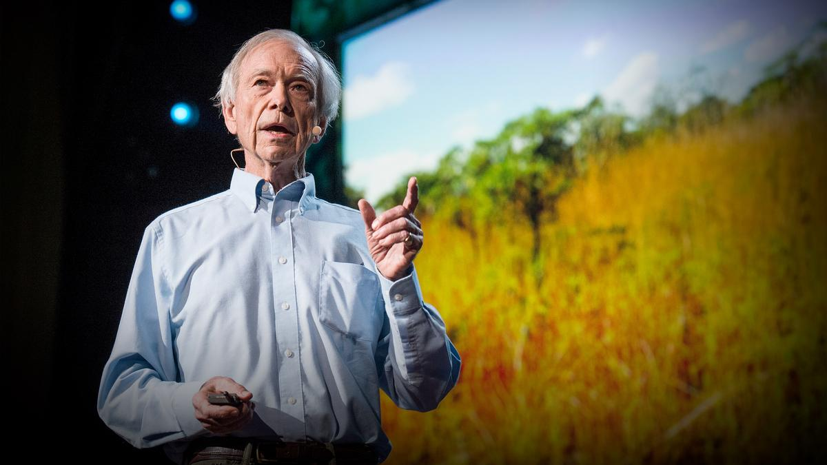 How to fight desertification and reverse climate change