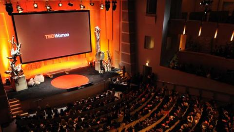 ted online stream